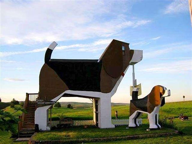 Удивительный дизайн, Dog Bark
